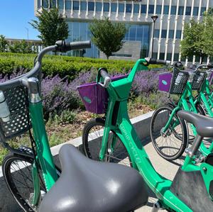 On Campus Bikes- Tessa Sutherland