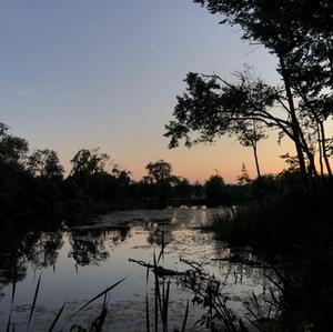 Indian Pond- Tessa Sutherland