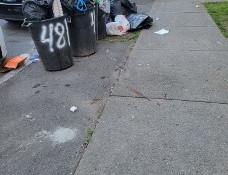 Pine Hills - A Neighborhood Taken Over by Litter