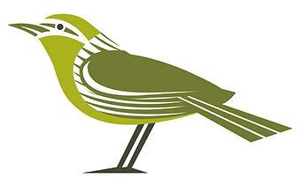 Warbler.jpg