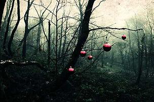 dark-christmas.jpg