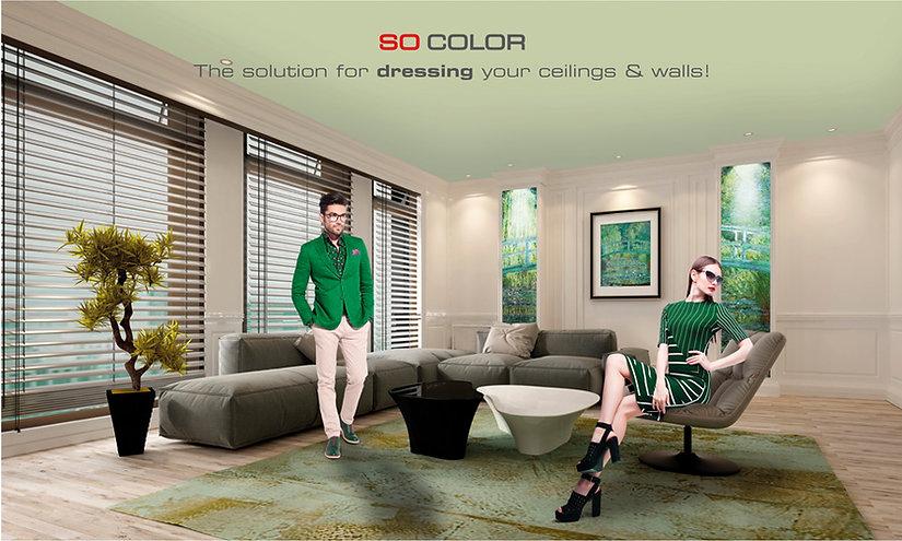 SO-color.jpg