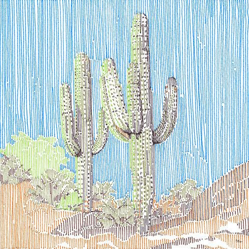 Cactus in Stripes 2