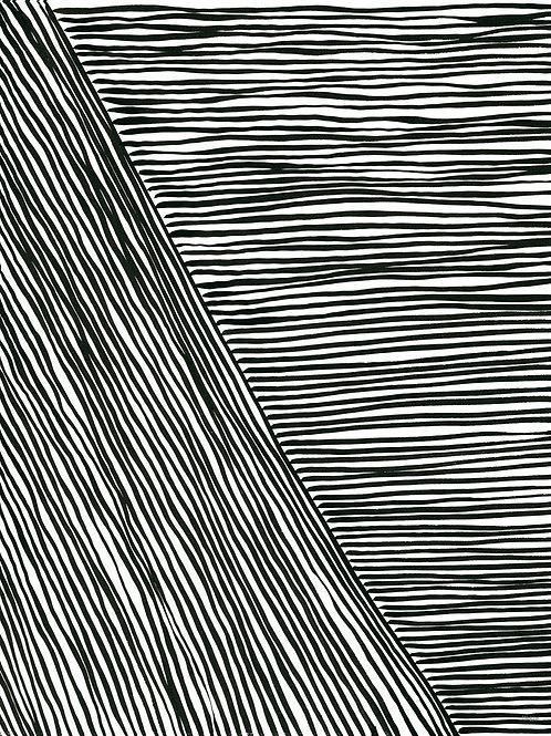 Black and White Stripes 4