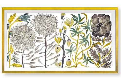 Wildflowers VII