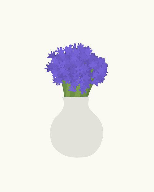 Hyacinth In Vase