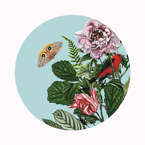 Bird Garden Plate 1