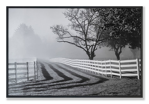 Fenced Pasture with Fog and Sunrise