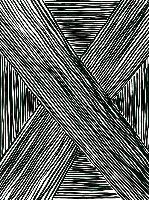 Black and White Stripes 1