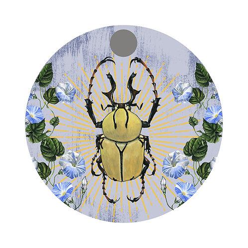 Beetle Plate 4
