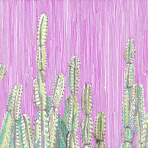 Cactus in Stripes 1