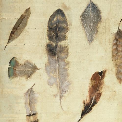 Feather Heirloom 1