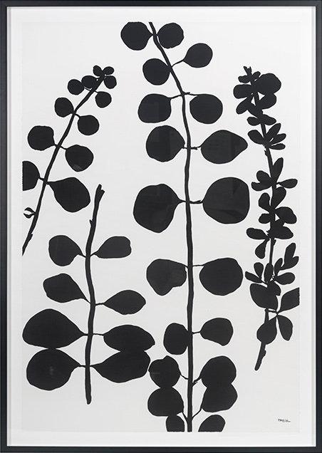 Black gray 1