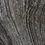 Thumbnail: Antico Wood Vein
