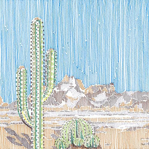 Cactus in Stripes 4
