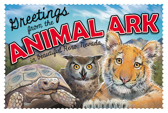Animal-Ark-Postcard-2017