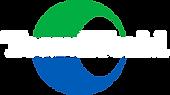 TeamWorld Logo White.png