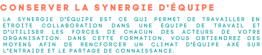 synergie.png