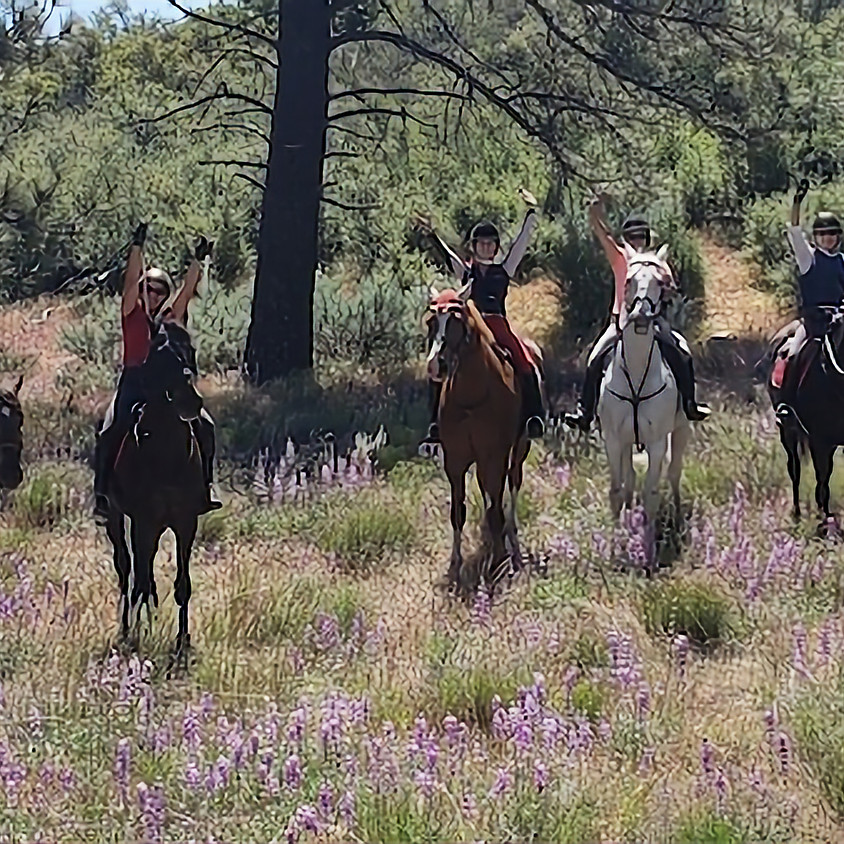 Trail Ride and Introduction to Riding to Hounds