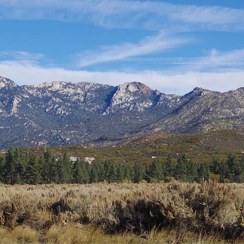 Hunter Pace, Garner Ranch, Mountain Center, CA