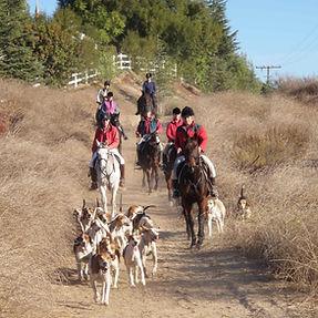 roadinghounds001.jpg