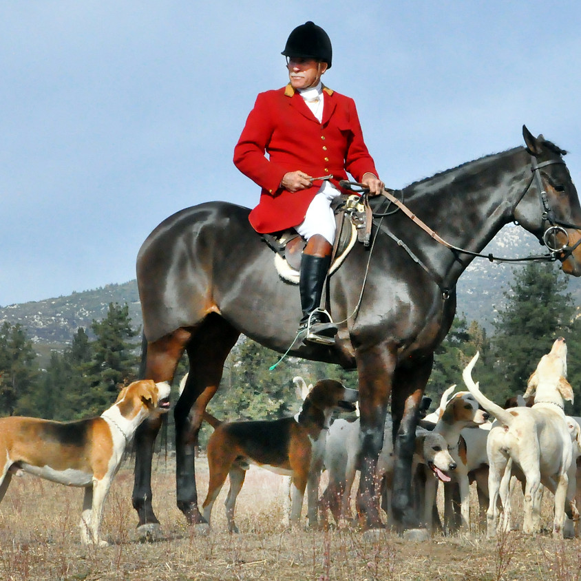 SFWHH Opening Hunt