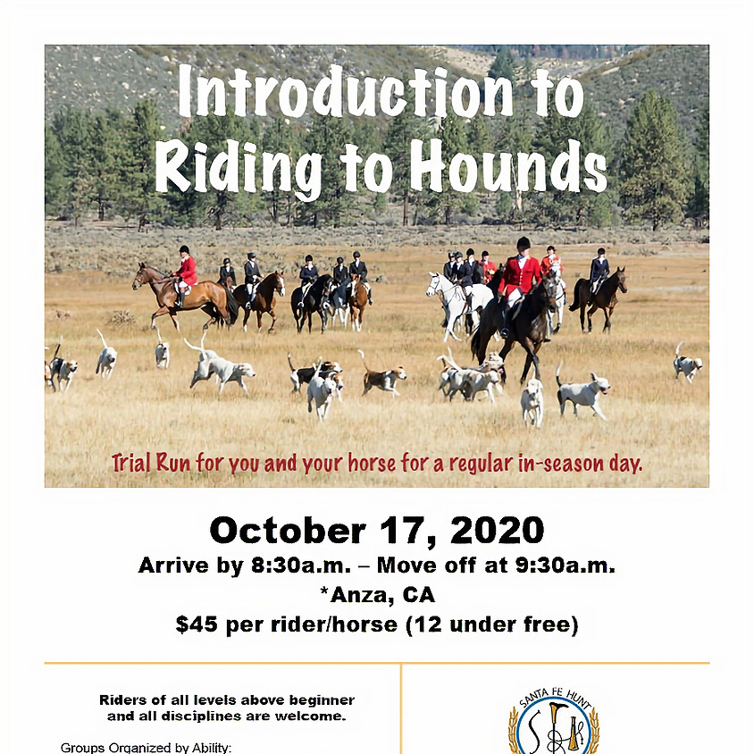 Introduction to Riding to Hounds