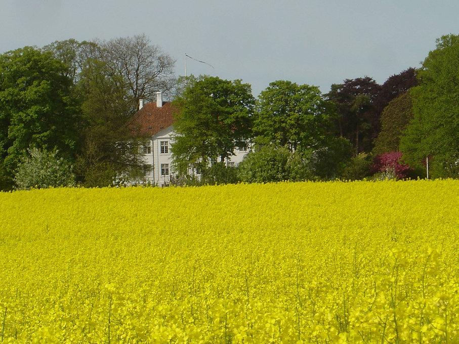 Landbrug_top.jpg