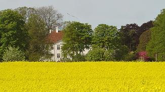 Landbrug_1.jpg