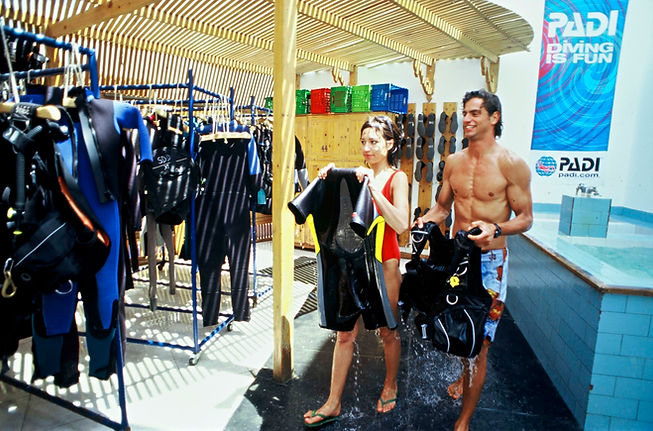 Dive Company | After Work Training