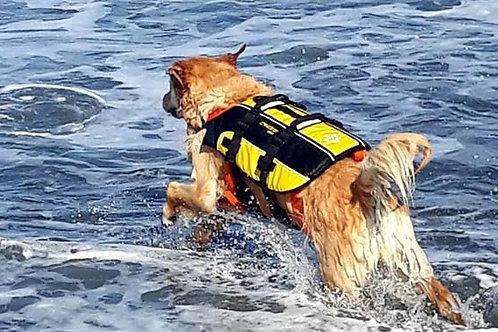Cressi Dog -  Schwimmweste