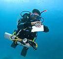 self-reliant-diver.jpg