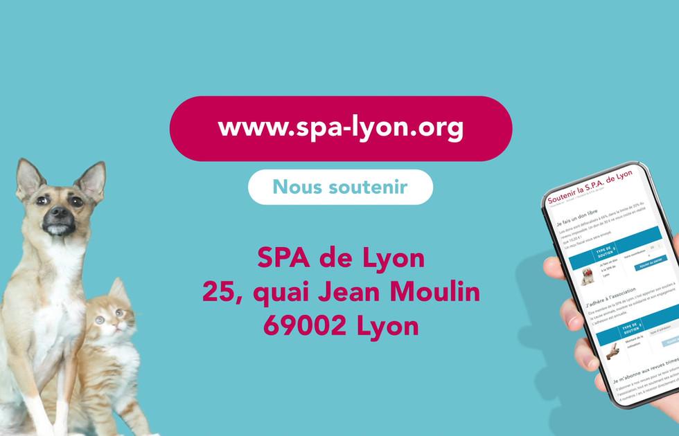 Motion design campagne de dons SPA de Lyon