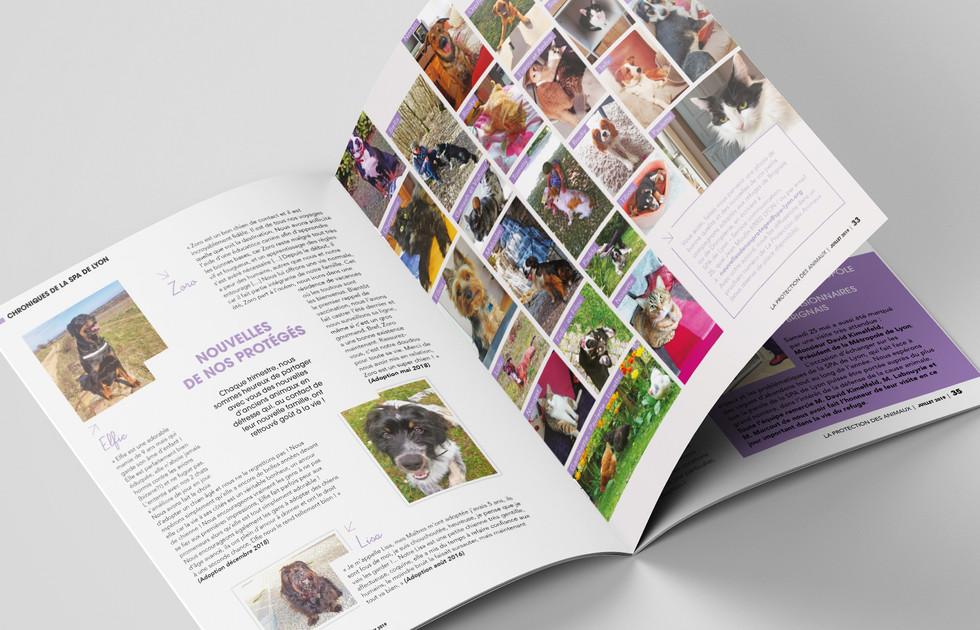 Magazine La Protection des animaux - SPA de Lyon