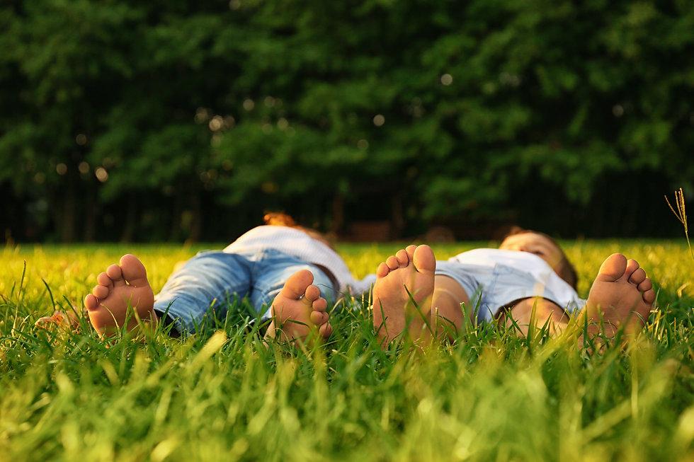 enfants-herbe-nature-distribution