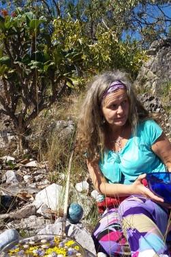 Claudia do Valle Gonçalves - Florais do Cerrado