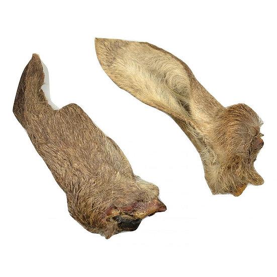 Carnis oreilles de chevreuil avec poils 5pcs
