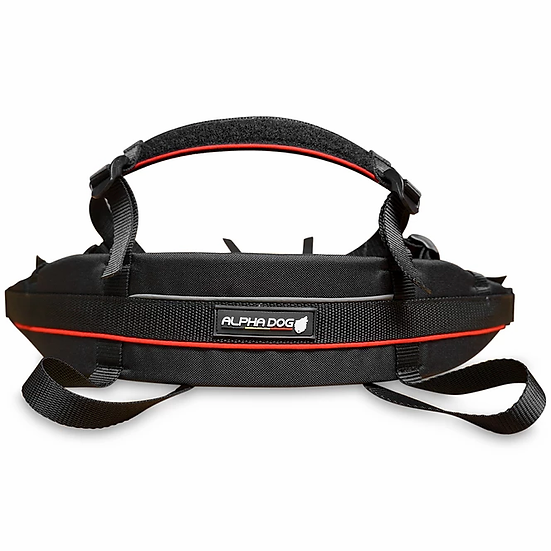 Alphadogsport baudrier speed couleur