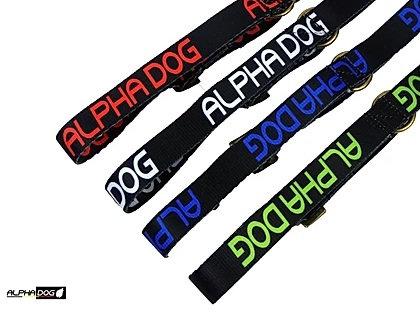 Alphadog collier basic standard