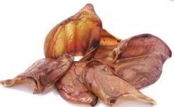 Oreilles de porcs