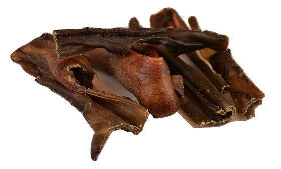 Carnis - peaux de chameau 200gr