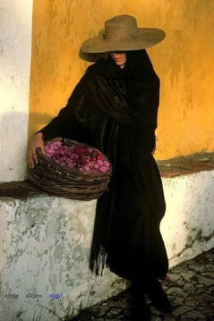 Hats and Hijabs: An Algerian and Turkish discourse