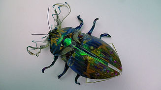 Hannah Coates, recycled plastics, colourful, recycled mixed media, insect jewellery