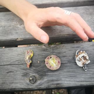 Flor Maesen - Mystical Landscaping