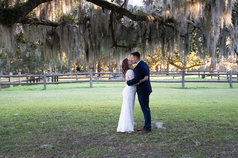 kiss under the mossy trees charles towne landing