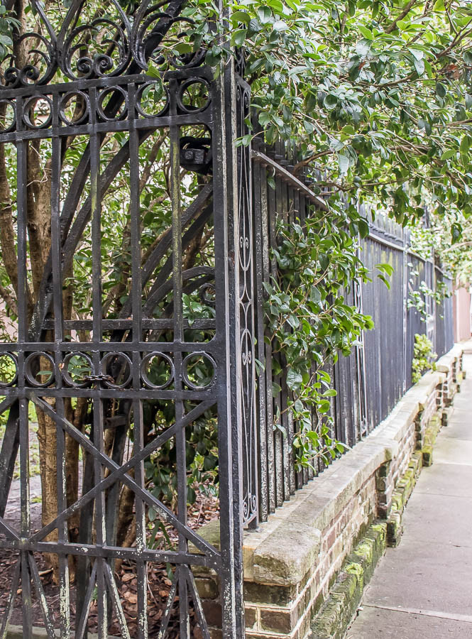 wrought iron fencing downtown charleston sc