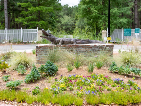 Cypress Gardens Elopements