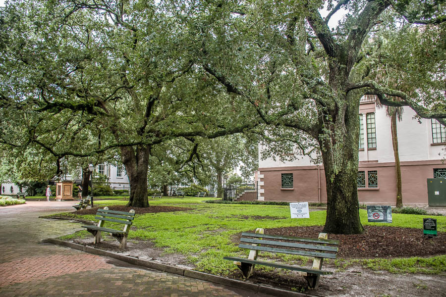 washington square park downtown charleston