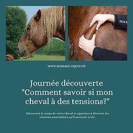 Copie de Copie de Copie de journée initiation au bien-être et soutien du cheval de sport T