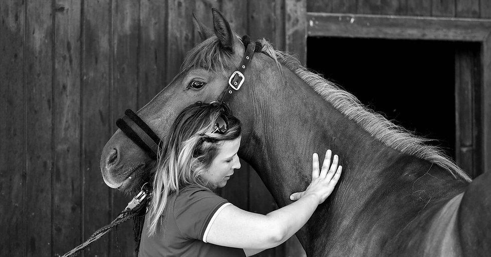 massage+équin+cindy+wohlwend+cheval+suisse+massage cheval